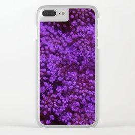 Purple Queen Anne's Lace Landscape Clear iPhone Case