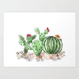 Cactus watercolor illustration Art Print