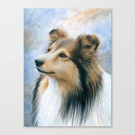Sheltie Collie Dog Canvas Print