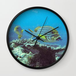 Sweetlips at the cleaning station Wall Clock
