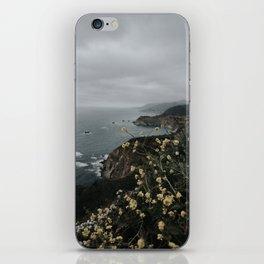 Big Sur iPhone Skin