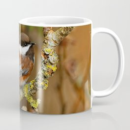 Chestnut-Backed Chickadee in the Cherry Tree Coffee Mug