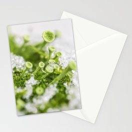 Microcosmos 01 Stationery Cards