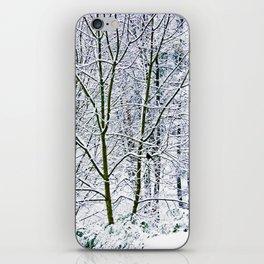 Lone Blackbird After The Snowfall iPhone Skin