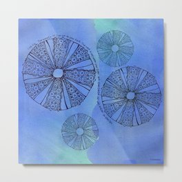Blue Sea Urchin Metal Print