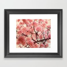 Welcome To Spring Framed Art Print