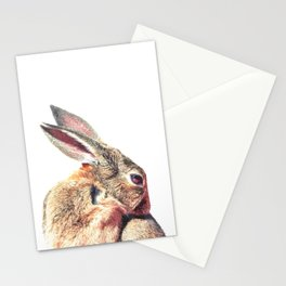 Rabbit Portrait Stationery Cards
