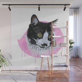Domestic Cat Wall Mural