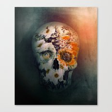 Skull Still Life II Canvas Print