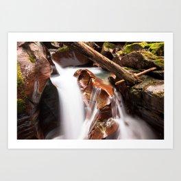 Avalanche Gorge Waterfall Art Print