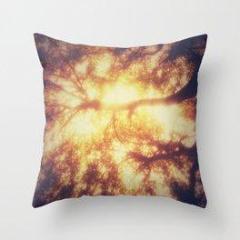 2196 A.D. Throw Pillow