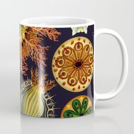 Ernst Haeckel Sea Squirts Ascidiae Coffee Mug