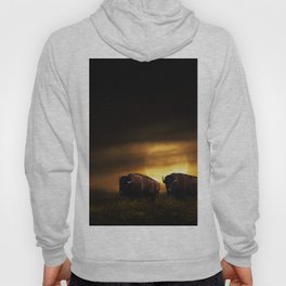 Two American Buffalo Bison with Moon Rise Hoody