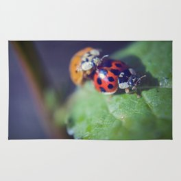 Lady Bug Love Rug