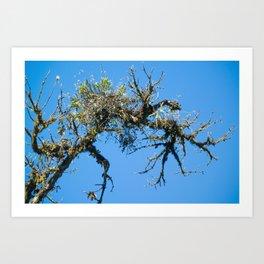 Treehuggers Art Print