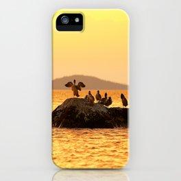Summer Scene - Birds are resting on Stone - Sunset Sky #decor #society6 #buyart iPhone Case