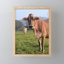 Cows in a Field Framed Mini Art Print
