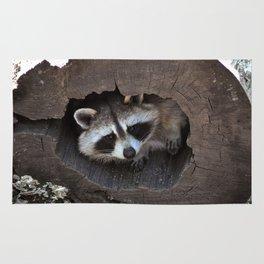 Hiding baby raccoon Rug