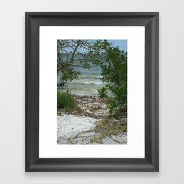 Lemon Bay Waves DPG160517b Framed Art Print