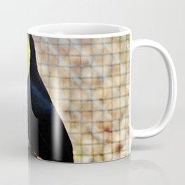 Swainson's Toucan Coffee Mug