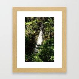 Rainbow Springs Waterfall Framed Art Print