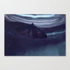 Moth-33 Canvas Print