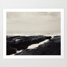 Wild Coast Art Print