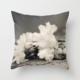 Fallen Flowers - by Cheryl Gerhard Throw Pillow