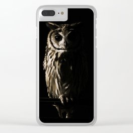 Animal Photography - The Owl Clear iPhone Case