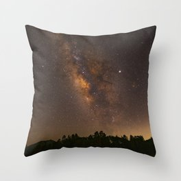 Summer Milky Way Over the Lake Throw Pillow