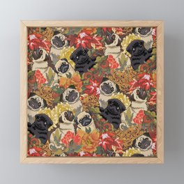 Because Pugs Autumn Framed Mini Art Print