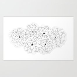 Cabbage Roses Art Print