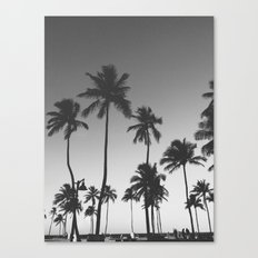 Palm Trees II Canvas Print