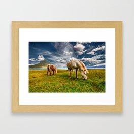 Windswept Horses Grazing Framed Art Print