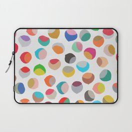 painted chestnuts 1 Laptop Sleeve
