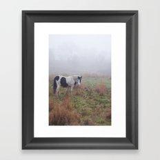 Black and White Horse Framed Art Print