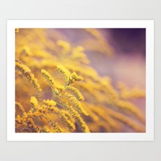 Golden Yellow and Lilac Art Print