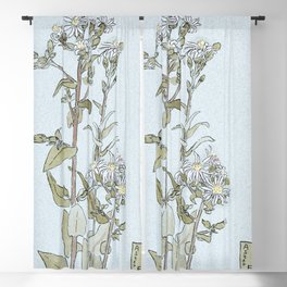 Aster on Green Ground by Hannah Borger Overbeck Blackout Curtain