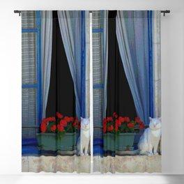 Window cat Blackout Curtain