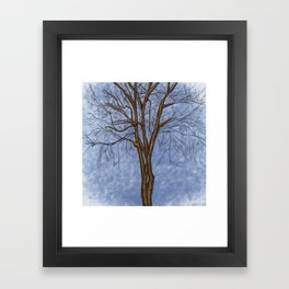 The Twisted Tree Framed Art Print