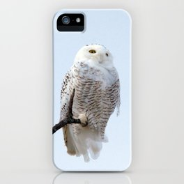 Lofty Vision (Snowy Owl) iPhone Case