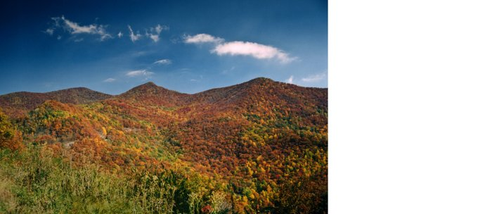 Autumn on the Mountains of the Parkway Coffee Mug