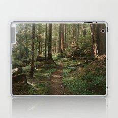Wonderland Forest Trail Laptop & iPad Skin