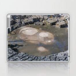 Smile of the Earth Laptop & iPad Skin