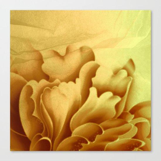 peach veiled flower Canvas Print