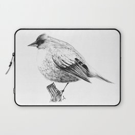 Pajaro Laptop Sleeve