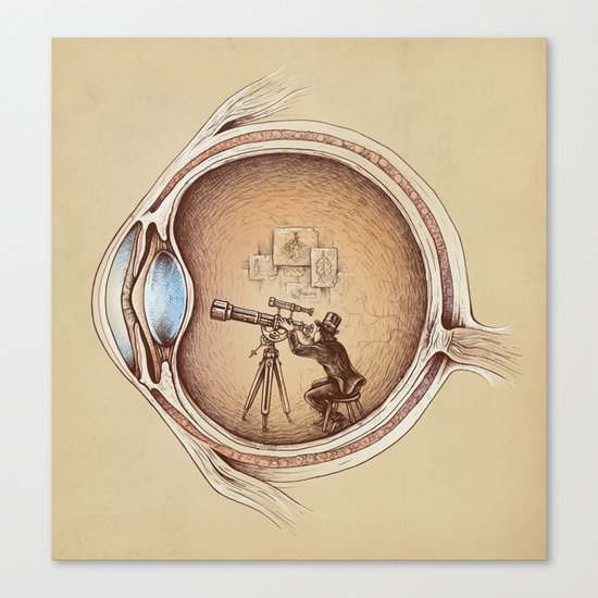 Extraordinary Observer Canvas Print