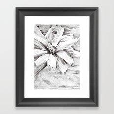 Flower drawing Framed Art Print