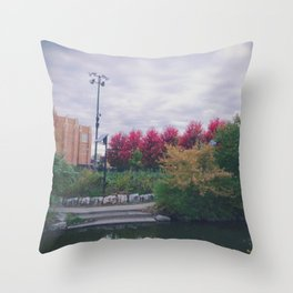 Fall in Chicago Throw Pillow