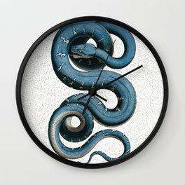 Blue White Vintage Snake Illustration Animal Art Wall Clock